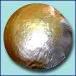 Philippine Exporter Raw of Pearls code JPROP004